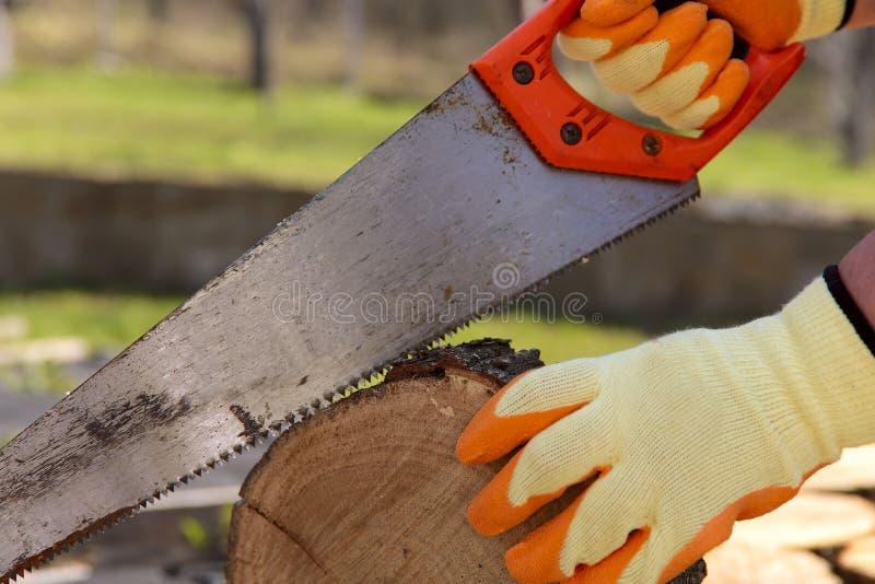一个人的手的片段在黄色手套的,锯在绿色自然背景的一把老锯  免版税库存图片