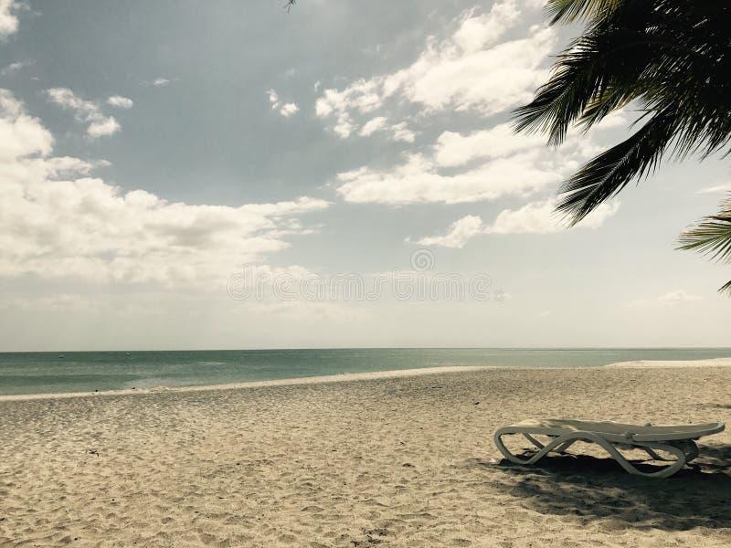 一个偏僻和哀伤的海滩 库存图片