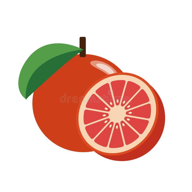 一个健康有机红色葡萄柚 皇族释放例证