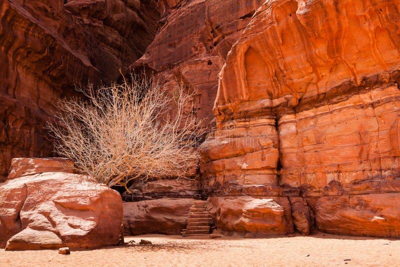 一个入口到最冷的洞里在沙漠 免版税库存照片