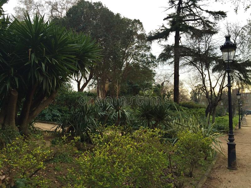 一个公园在西班牙 免版税图库摄影
