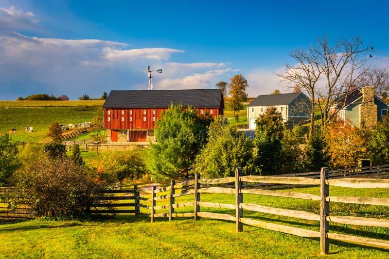 一个农场的红色谷仓在农村约克县,宾夕法尼亚 库存图片