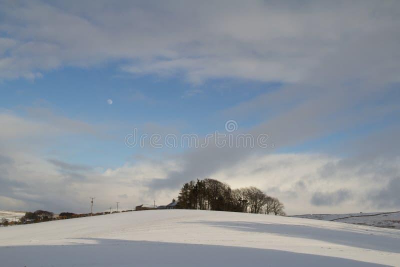 一个冬天场面在诺森伯兰角,英国 免版税库存照片