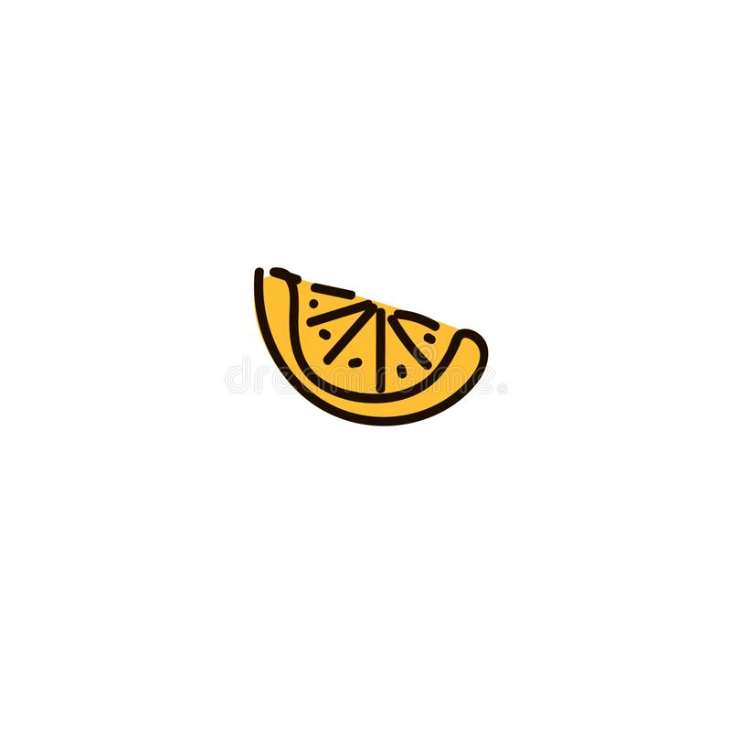 一个切片柠檬在白色背景隔绝的柑桔 与阴影的柠檬切片 皇族释放例证