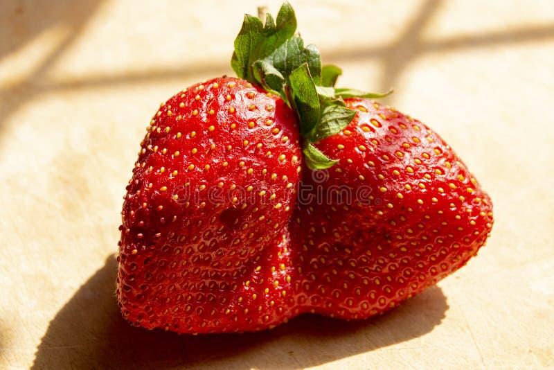 一个双重朝向的草莓 免版税库存图片