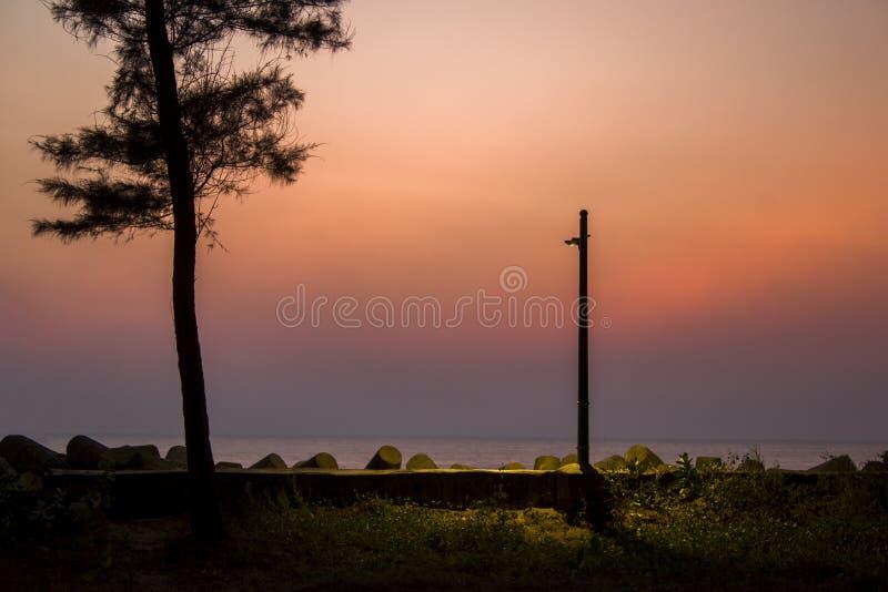 一个发光的路灯柱和黑树剪影以海和紫色桃红色日落天空为背景 免版税库存图片