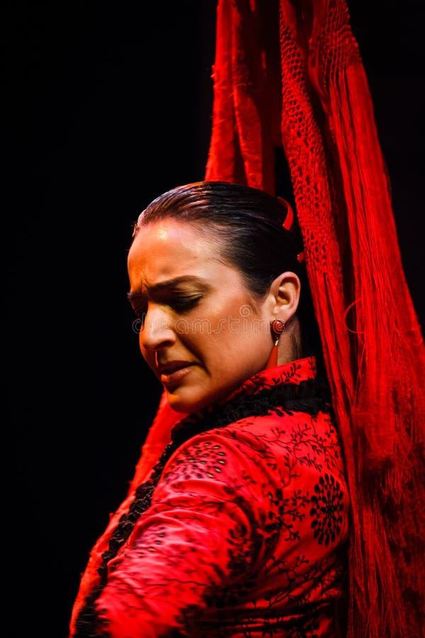 一个古典安达卢西亚的佛拉明柯舞曲舞蹈演员的纵向 免版税库存照片