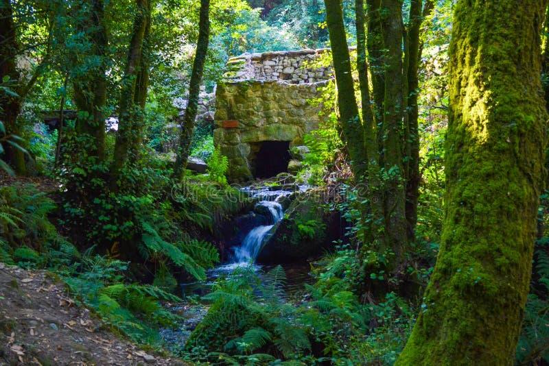 一个古色古香的房子的废墟由石头制成 老文化的废墟 免版税库存图片