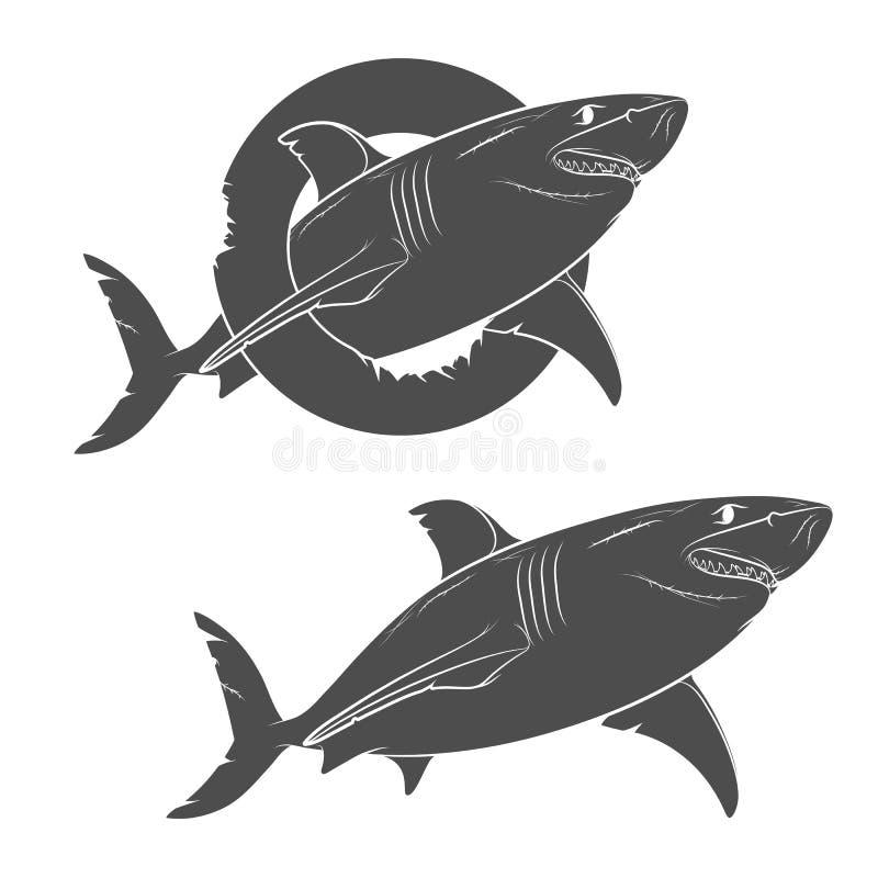 一个可怕的鲨鱼的传染媒介图画 在一个空白背景的对象 向量例证