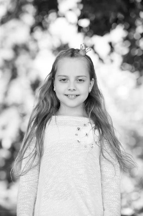 一个可爱的矮小的愉快的公主女孩的画象 库存照片
