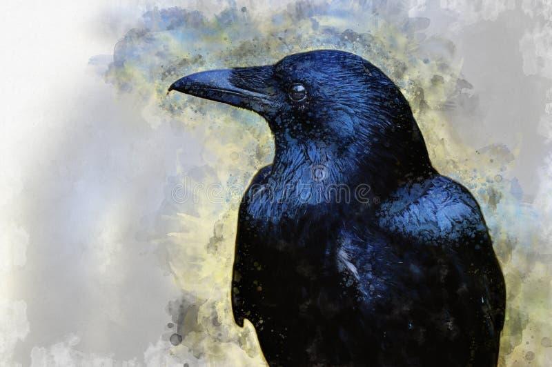 一个唯一乌鸦特写镜头的水彩绘画 库存图片