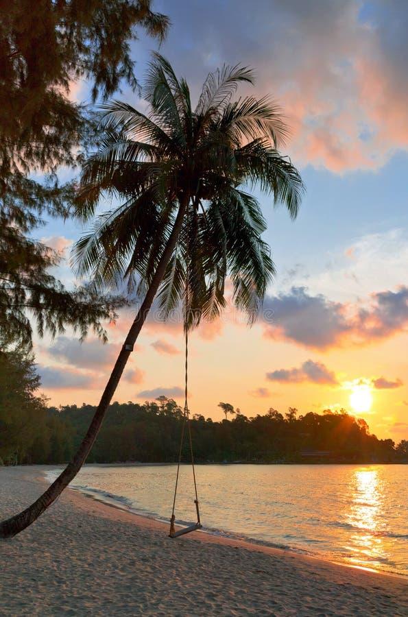 一个在日落的海滩和摇摆的看法与棕榈树的 库存图片