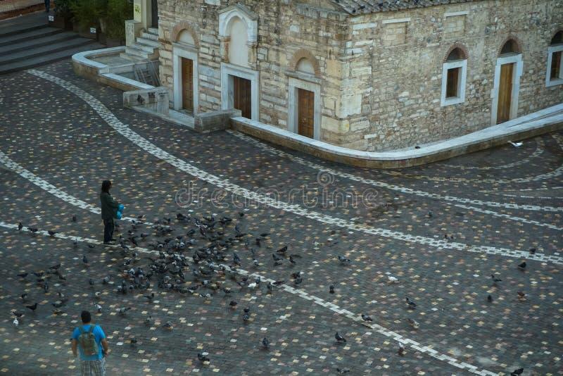 一个在美好的地板样式Monastiraki广场的人哺养的鸽子在古老教堂前面与stan的早晨 免版税库存照片