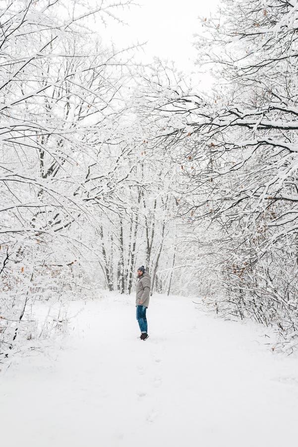 一个多雪的森林视图的一个人从在远处 图库摄影