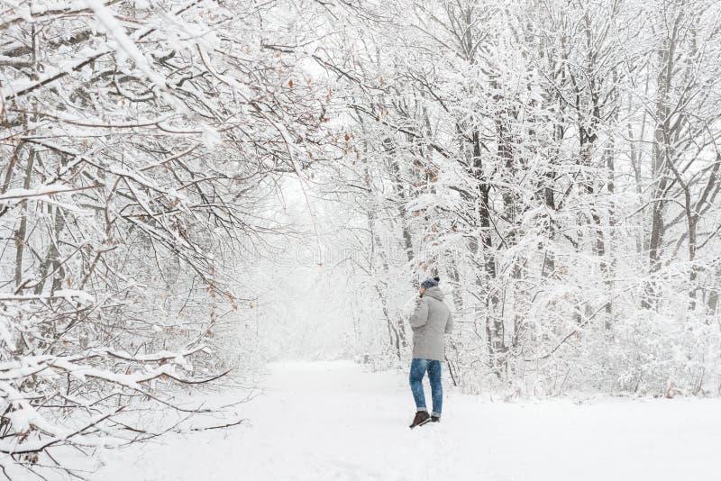 一个多雪的森林视图的一个人从在远处 免版税库存照片