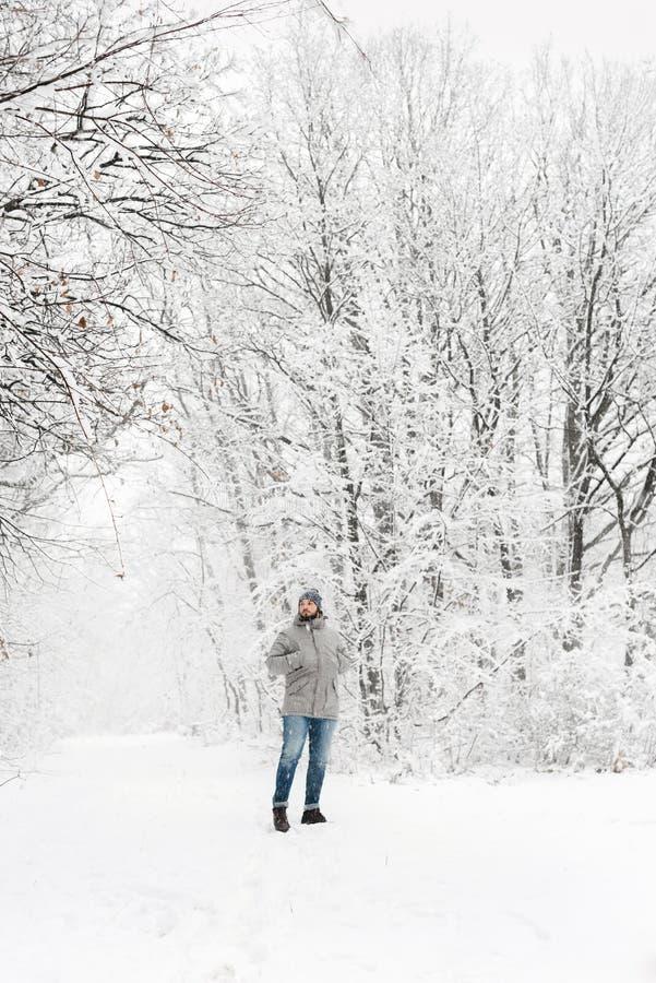一个多雪的森林视图的一个人从在远处 库存图片