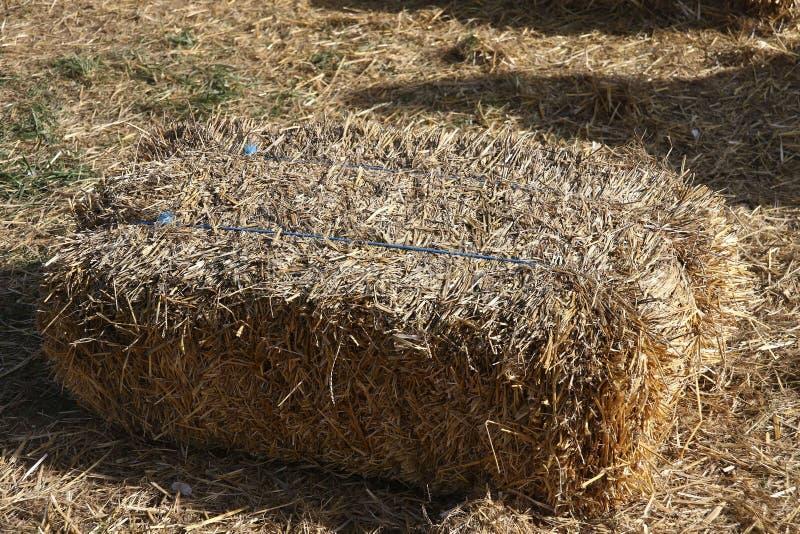 一个大包干草在阳光下 免版税库存图片