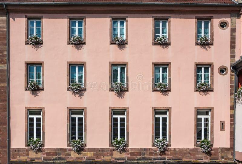 一个大厦的桃红色门面与窗口和花的在罐 图库摄影