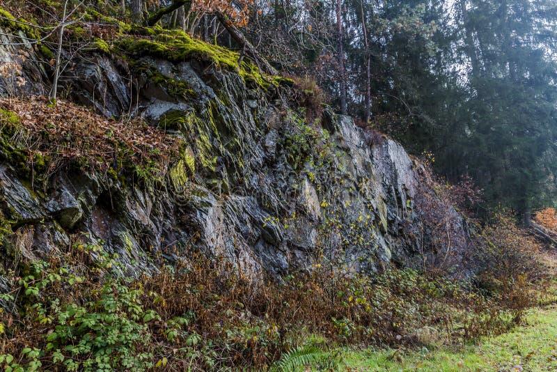 一个大板岩岩石的美好的图象在丛林和青苔中的 图库摄影