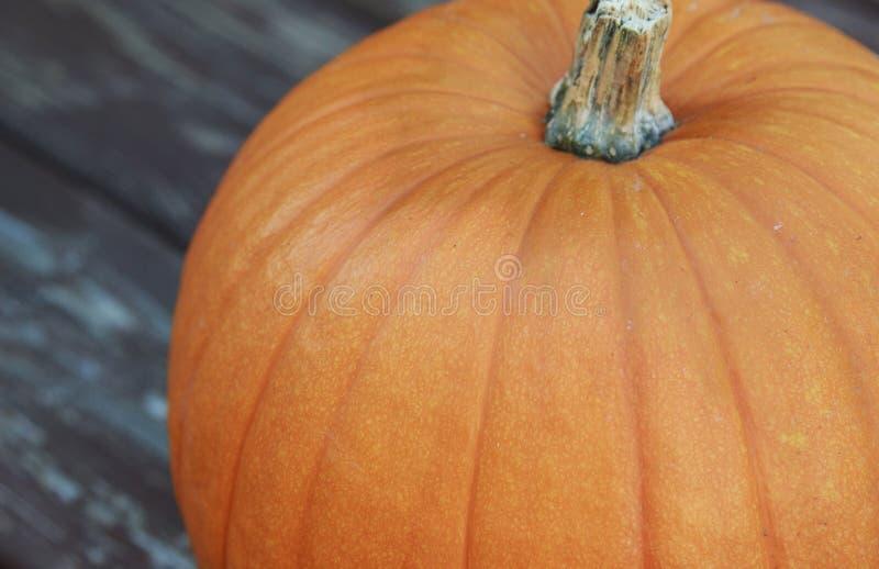 一个大橙色南瓜的接近的看法 库存照片