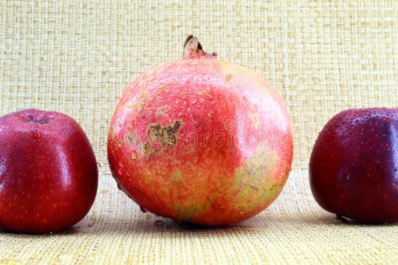 一个大红色石榴和两个红色苹果 免版税图库摄影