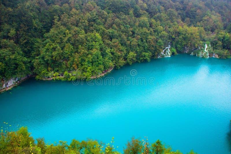 一个大蓝色湖的顶视图在Plitvice湖国立公园,克罗地亚 美好的风景:干净的大海,森林,瀑布 免版税库存照片