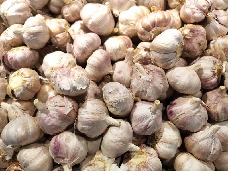 一个大藏匿处新大蒜头,恰好一起堆待售在一个地方农夫` s市场上 免版税库存照片