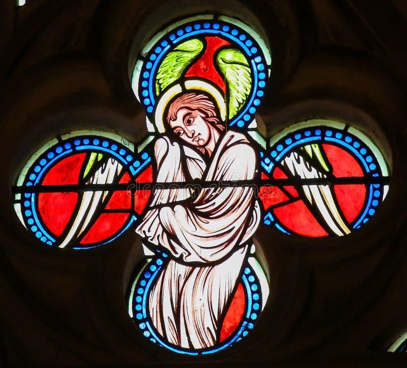 一个天使的彩色玻璃在巴约大教堂里 皇族释放例证
