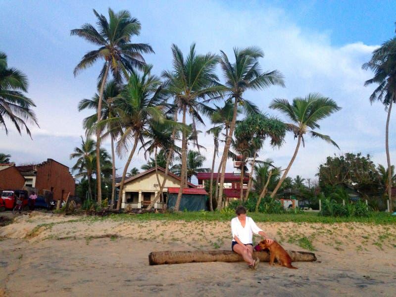 一个女孩和一条狗在海滩 库存图片