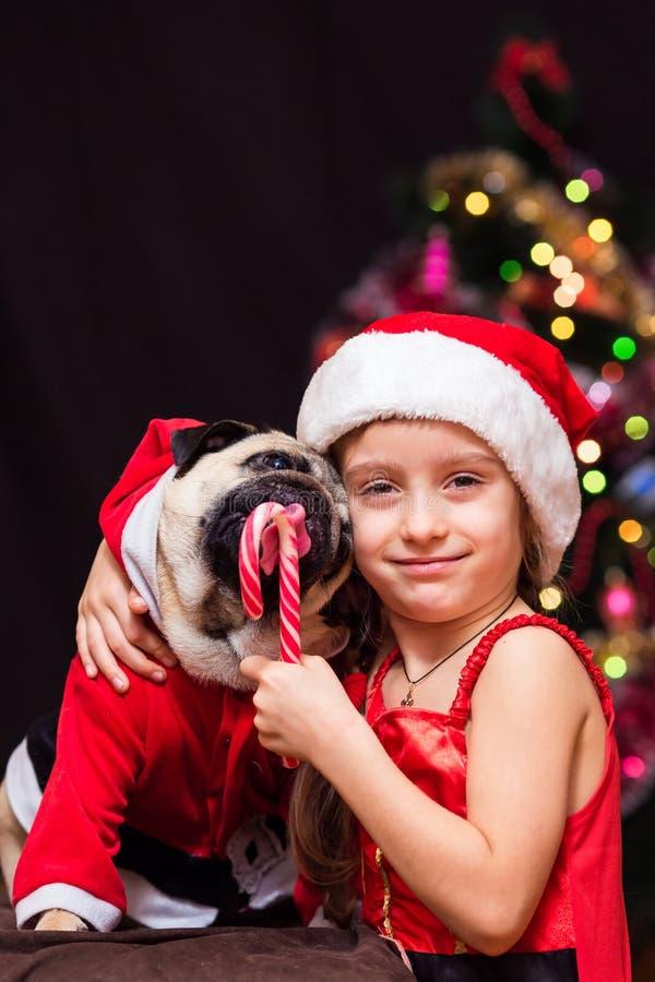 一个女孩在圣诞老人服装给一个哈巴狗舔棒棒糖n 库存图片