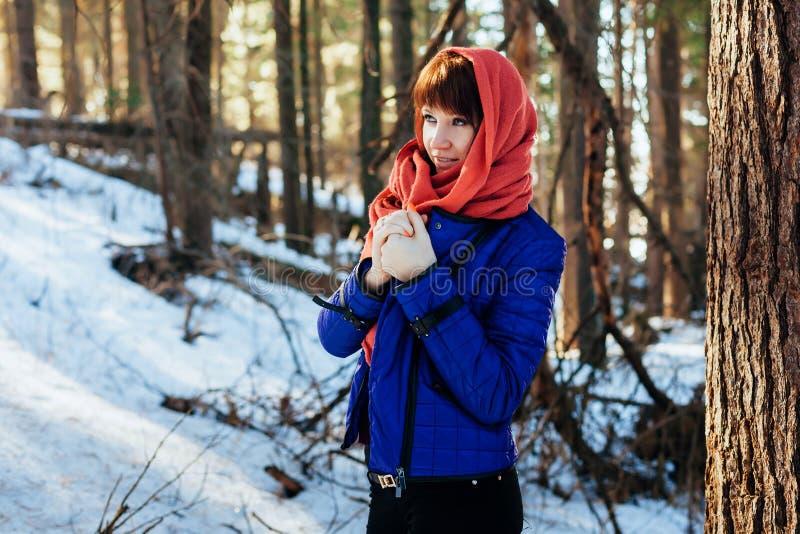 一个女孩的画象在一个晴朗的冬天森林里,在水兵和一条红色围巾的一棵树附近站立 库存图片