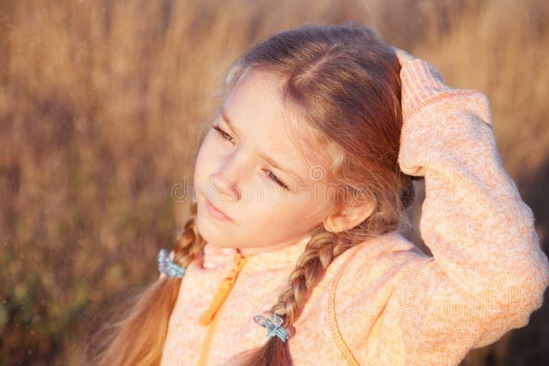 Download 一个女孩的画象有户外猪尾特写镜头的 库存图片. 图片 包括有 特写镜头, 滑稽, 眼睛, 表面, 被砍的 - 62535209