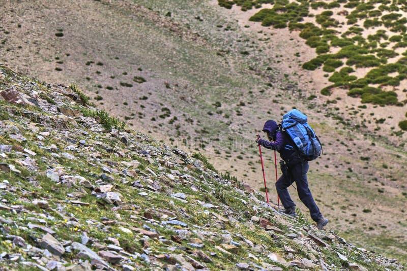 一个妇女旅游形象的侧视图与攀登陡峭的岩石倾斜的一个大背包的在喜马拉雅山,拉达克,印度 免版税库存图片