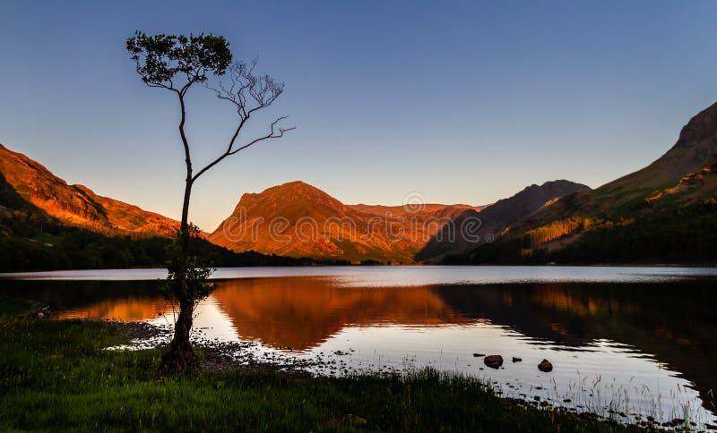 一个孤立小桦树和周围的镜子湖反射的惊人的Buttermere剪影和山在湖 免版税库存照片