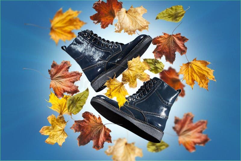 一个对温暖的秋天染黑在蓝色背景的皮革妇女` s起动与束秋叶 免版税库存照片