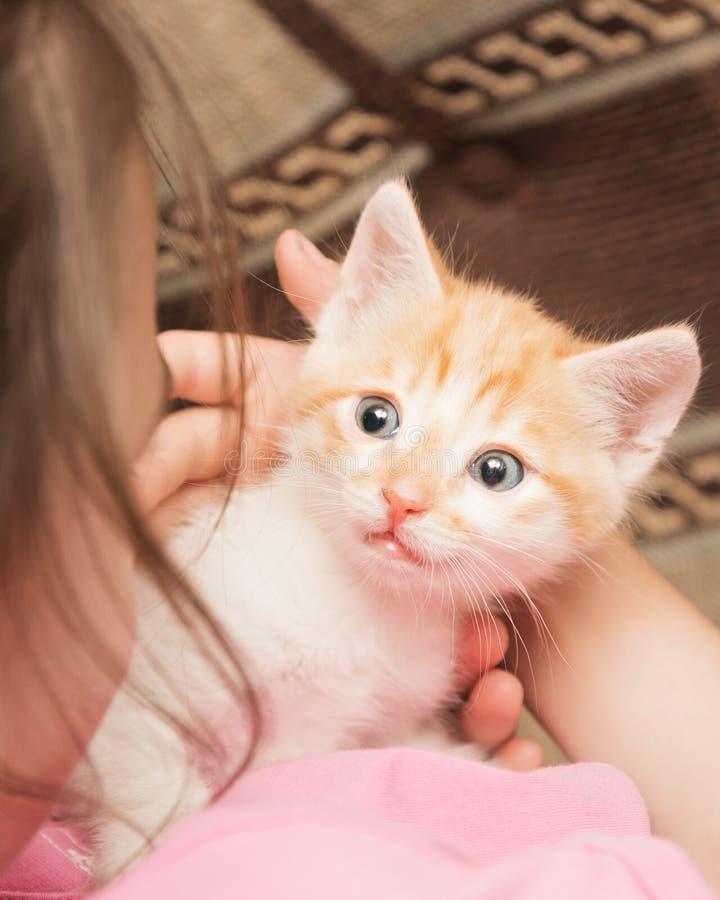 一个小女孩拿着在她的胳膊和拥抱的一只小猫 免版税图库摄影