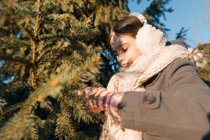 一个小微笑的女孩的室外冬天画象一条被编织的围巾的在圣诞树附近,金黄小时 图库摄影