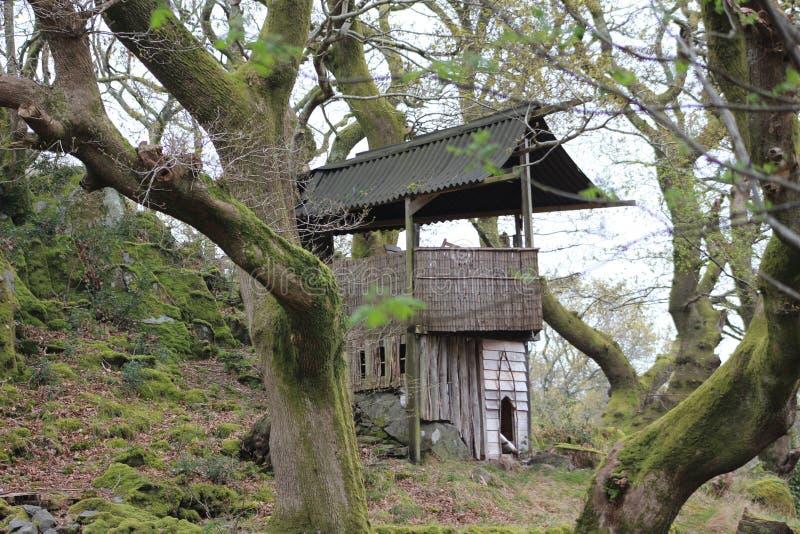 一个小木房子在斯诺多尼亚公园  库存图片