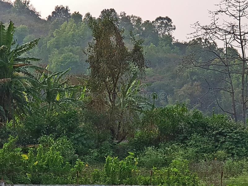 一个小村庄在安菲曼尼普尔邦印度 库存图片