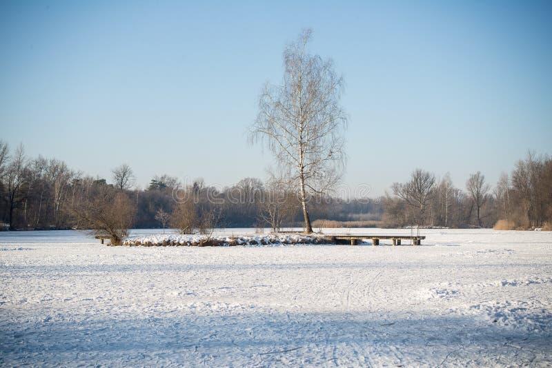 一个小海岛在用雪盖的一个冻湖中间在 库存照片