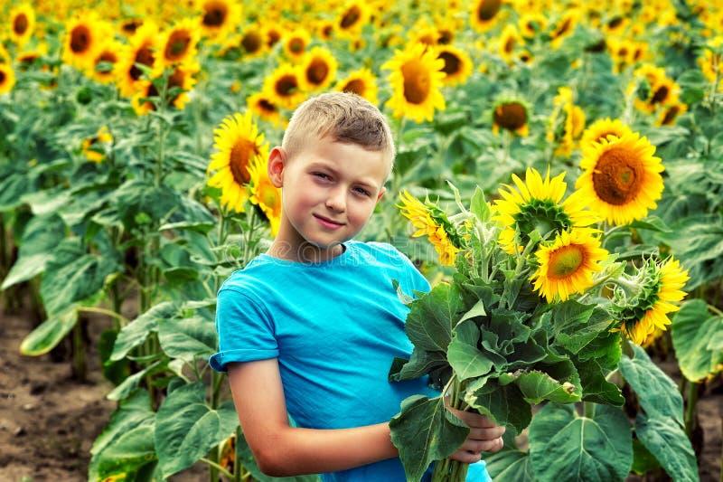一个小男孩的画象一个领域的用一个开花的向日葵 免版税图库摄影