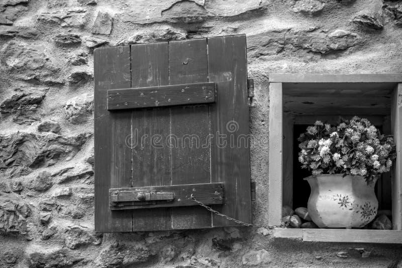 一个小的开窗口的水平的看法与一个开花的罐的在G 免版税图库摄影