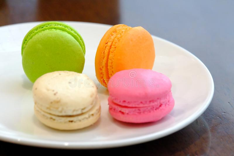 一个小组多彩多姿的蛋白杏仁饼干,一个著名法国点心在木dinning的桌上的一棵白色植物中 免版税库存图片