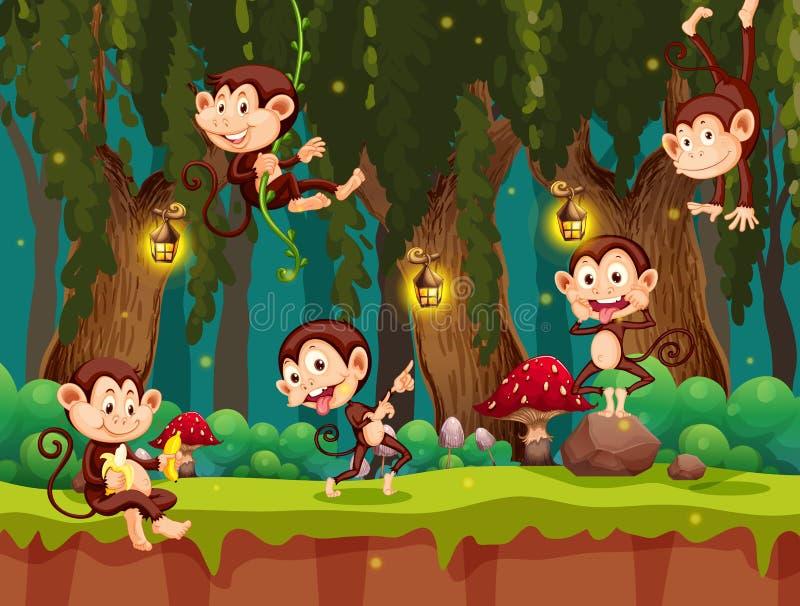 一个小组猴子在密林 皇族释放例证