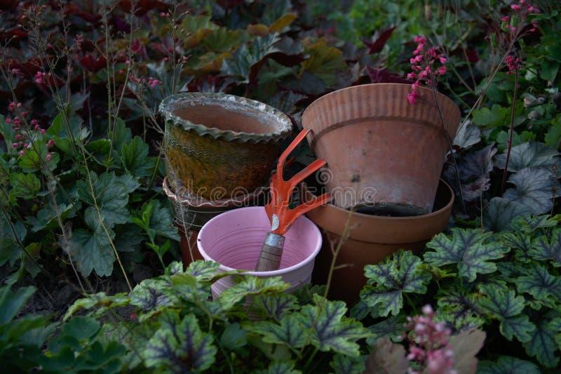 一个小组老陶瓷和罐子花盆和松开在庭园花木中的土壤工具 免版税库存照片