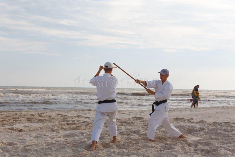 一个小组运动员在空手道训练在海岸 库存照片