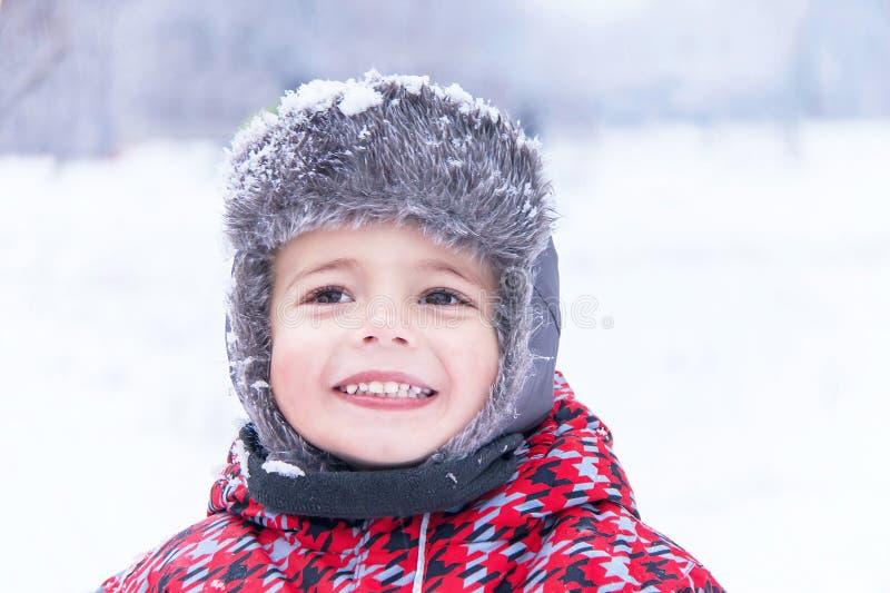 一个小逗人喜爱的男孩的画象冬天背景的 库存图片