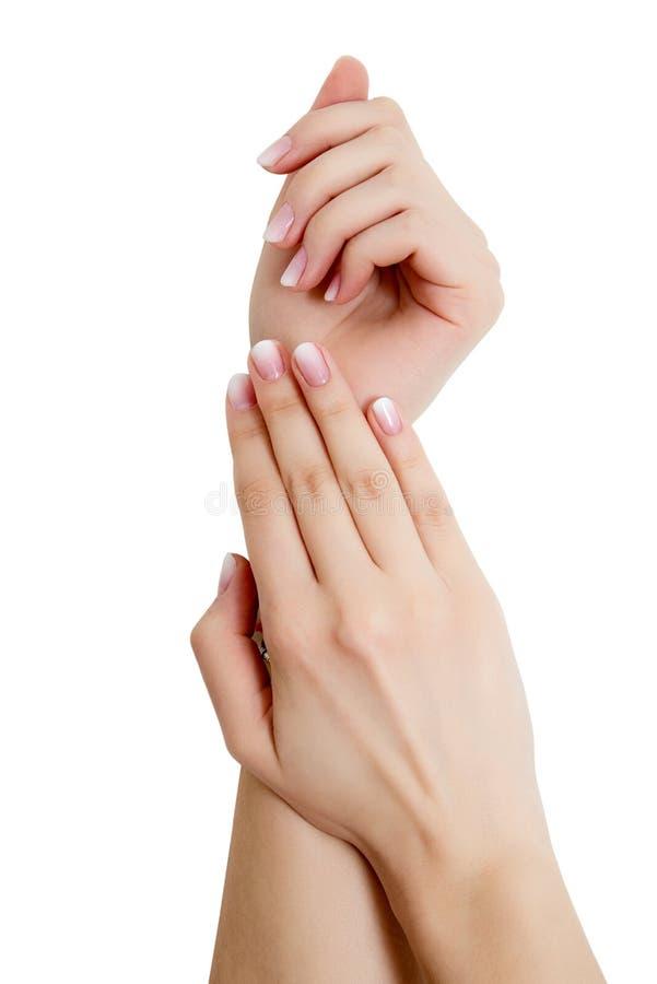 一个少妇的手特写镜头有长的桃红色修指甲的在反对白色背景的钉子 库存照片