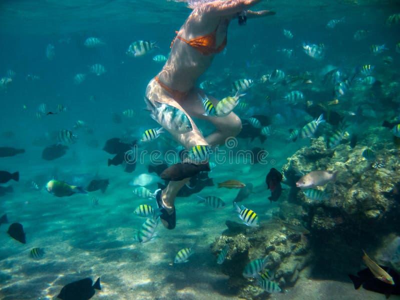 一个少妇的水下的照片 免版税库存图片