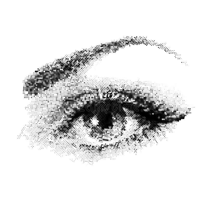 一个少妇的美丽的眼睛 库存例证